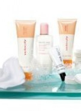 MARYKAY ACNE FIGHTERS SET